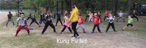 Kung Fu les