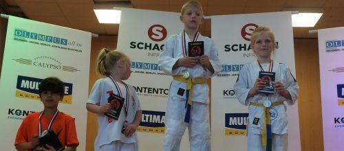 Ruben Vaandering wint BPO judotoernooi te Hasselt.
