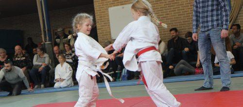 Nieuw: Judo Hengelo Achterhoekse Molenweg