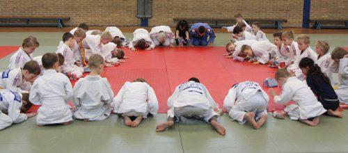 Geslaagd weekend voor Judo Promotion Twente.