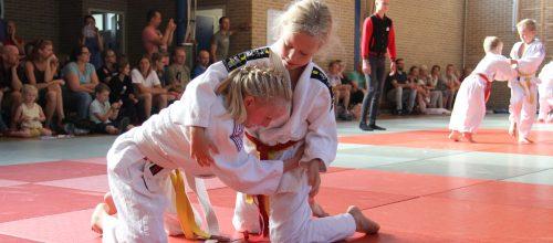 Judo Promotion Twente kampioenschap in Hengelo.