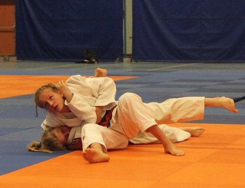 Zilver en brons voor teams Judo Promotion Twente op NK