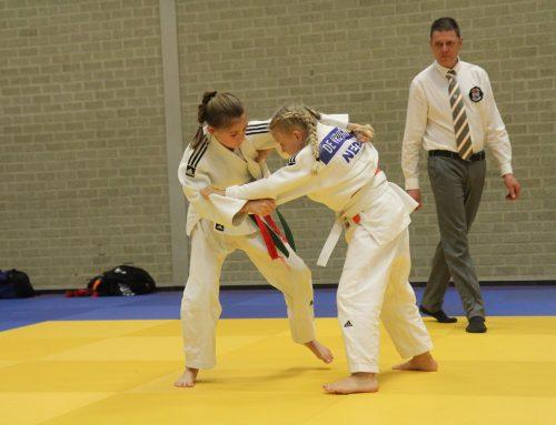 Zilver voor JPT-judoka Hanneke Plaggemars op het Heidetoernooi.
