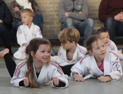 Judo3daagse Judo Promotion Twente