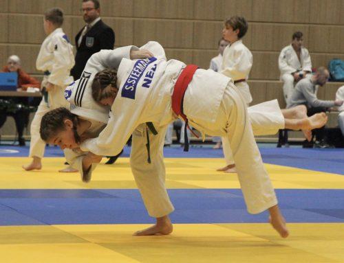 Hoogeveen, Ouder-en-kind judo en korte terugblik