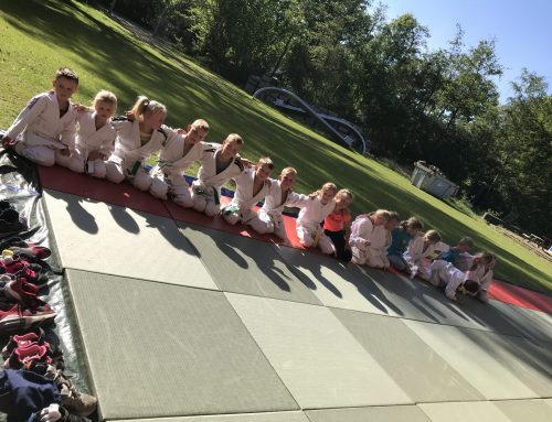 Buitenrooster Judo Promotion Twente